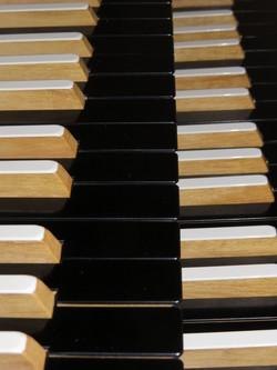 Organist Gustafssons tangenter. Det bara skriker och piper i stämmorna!