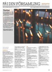 Programmet i stiftet i pdf-format för tiden 1–14.11.