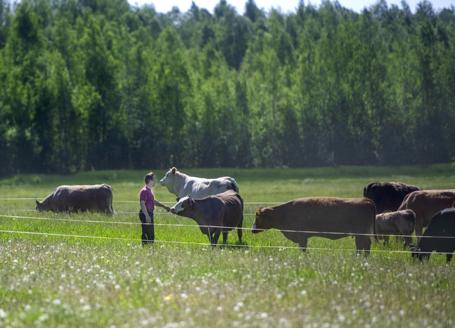 Mats Björklund är djuruppfödare och troende.