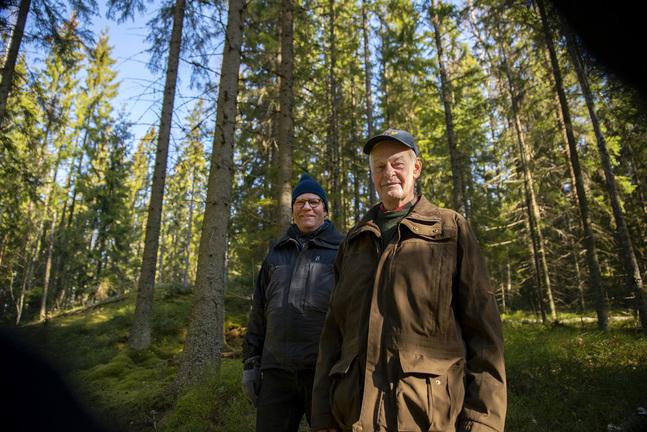 Håkan Nyman och Mårten Malmström har känsloband till skogarna i Vällskog.