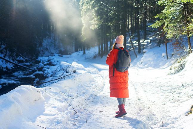 Snön gör omgivningarna vackrare just nu och många rör sig i närområdets parker och skogar.
