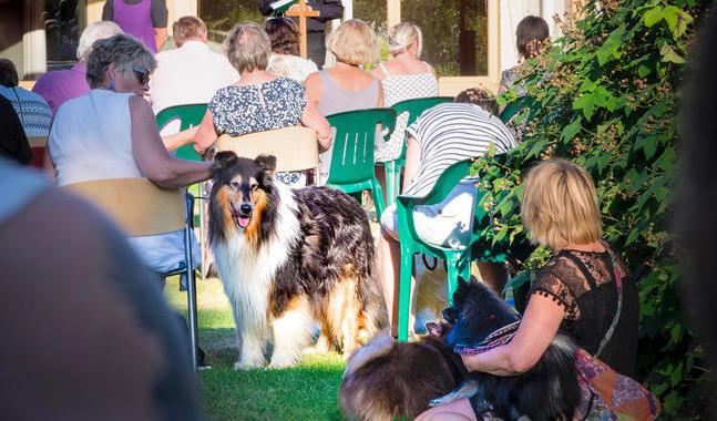 Utöver hundarna deltog också ungefär 160 människor i gudstjänsten.